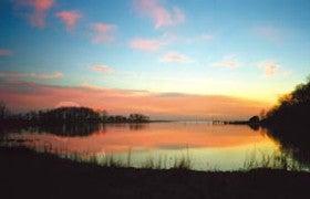 Rye Marshlands Conservancy